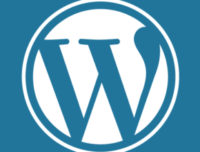 WordPress::Timthumb